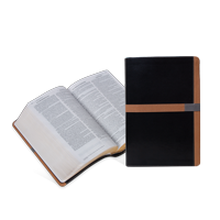 Comparative Parallel Bible (NIV, KJV, NASB, AMP)