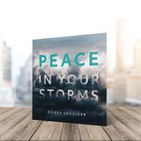 Peace in Your Storm CD single